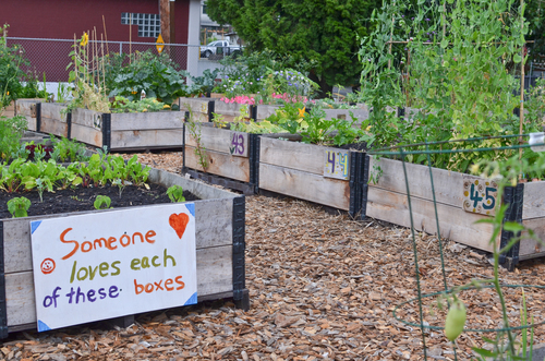 Garden plots secured for learning programs